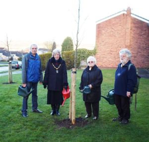 Chilwell Tree Planting