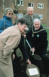 Tree planting a copyright_S&M_Wallwork